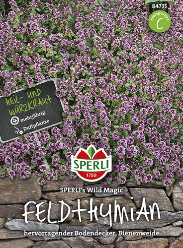 Feldthymian 'Sperli´s Wild Magic'